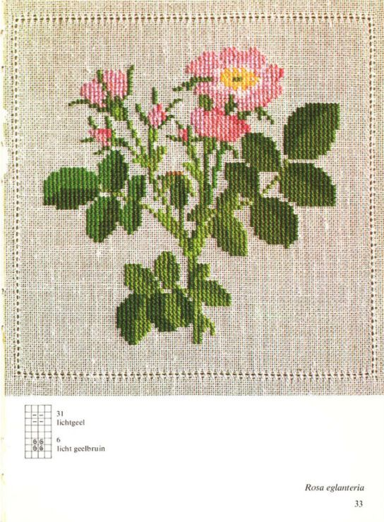 Gallery.ru / Фото #2 - Cross Stitch Pattern in Color - Mosca