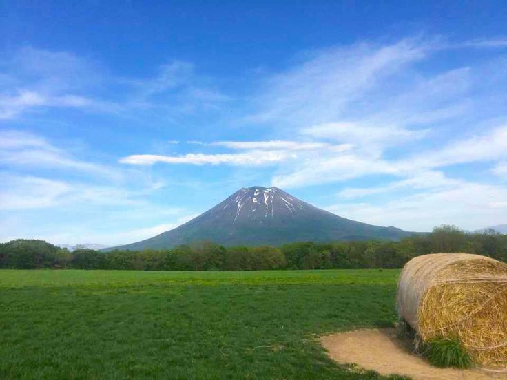 What a view of Yotei from Milk Kobo! Ice cream, sunshine and beauty... what more could you ask for? #mountains #beautiful #summer #spring