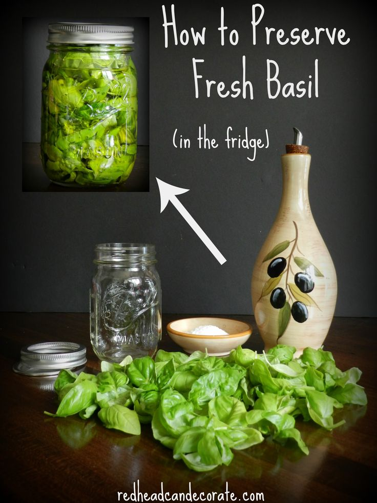 How to preserve fresh basil in the refrigerator easily for up to two years.