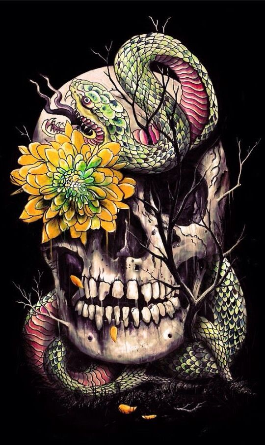 by Nicebleed  Skulls / Skeletons / Bones  Pinterest