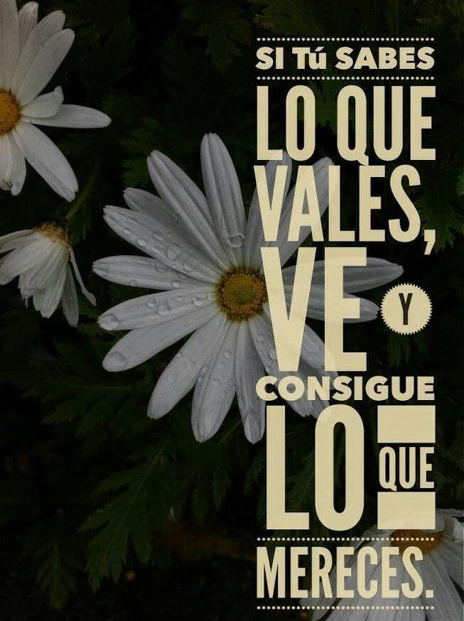 Frase motivadora https://www.facebook.com/bimlatinoamerica/app_208195102528120