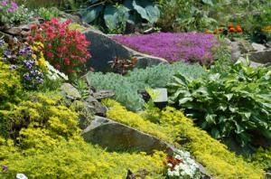 Don't Make These 10 Common Landscaping Mistakes: Failure to Work With What You Have