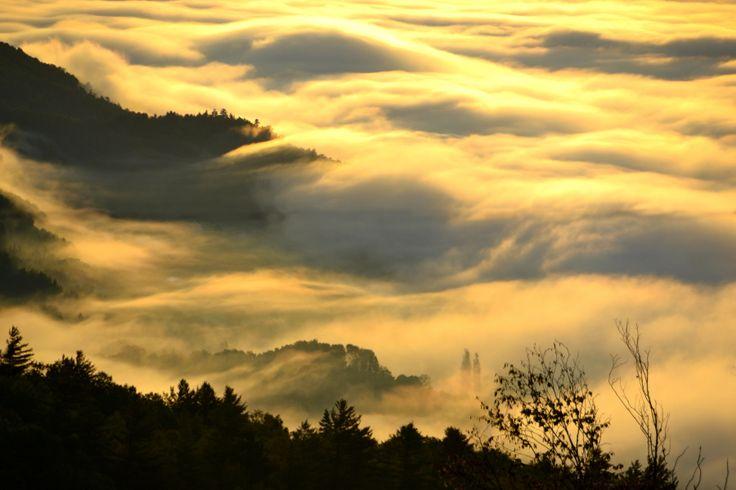 Matin brumeux sur le plateau des Éboulements (2013)
