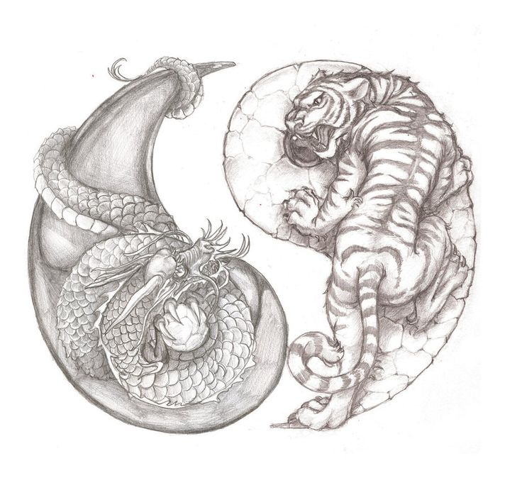 Awesome tiger and dragon yin yang tattoo idea