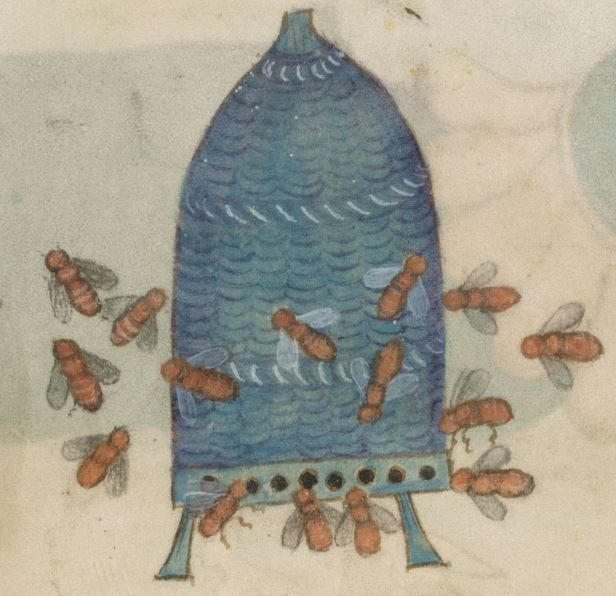 Detail from The Luttrell Psalter, British Library Add MS 42130 (medieval manuscript,1325-1340), f204r