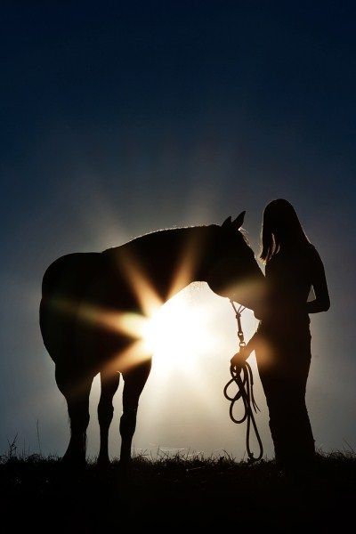 love sun manipulation pictures... especially with the horse!