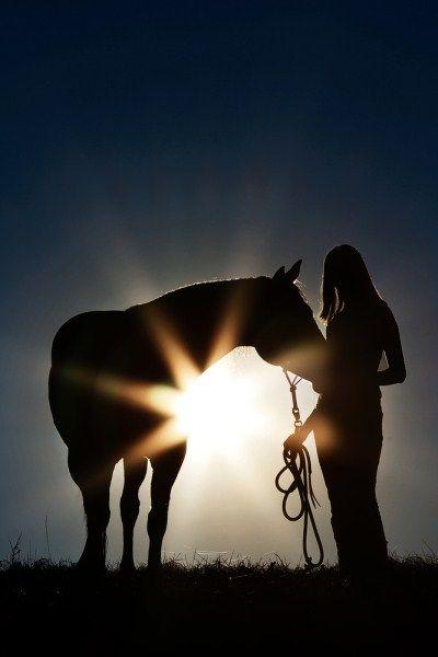 Horse & his girl