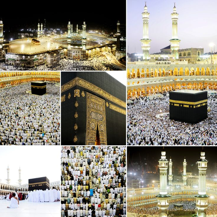Gatherings of Islamic world!  Umrah and Hajj are the prime gatherings of the Islamic world. The pilgrimage of Umrah can be performed anytime throughout the year, while Hajj takes place yearly. As compared to other months of the year, Ramada is the month in which most Muslims performs Umrah.     #islamicworld #umrahinramadan #ramadan #sawm #allah #prophetmuhammad #islam #beautyofislam #muslims #ummah #iman #umrahajj #umrah2017 #hajj2017