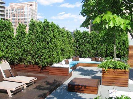 Райский сад на крыше многоэтажки