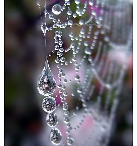 agua, beauty, crystal, diamond, diamonds, dropletts http://favim.com/image/32392/