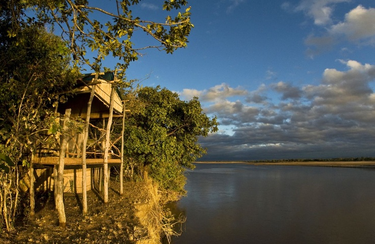 Our Island Bush Camp, with specially personalised service, lies under a grove of mahogany trees on the banks of the Luangwa River in the South Luangwa National Park, Zambia. This small bush camp offers rustic accommodation in grass and reed huts build on stilts that ensure safety from wild animals and provide an unlimited view of the Luangwa River.