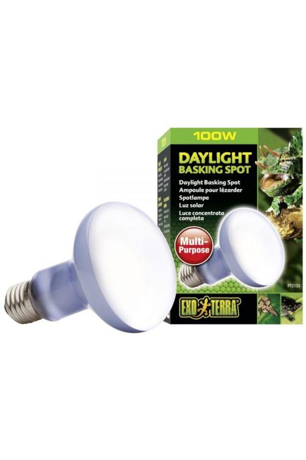 Exo Terra Daylight Basking Spot 100 Watt Heat Lamps Bulb Uva Light