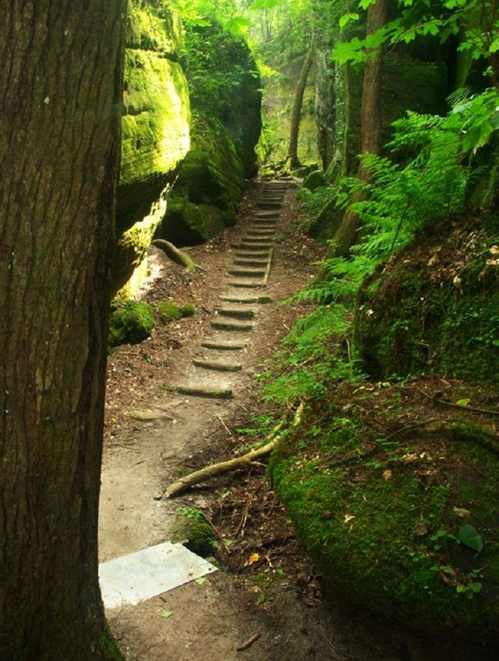 The trails that meander through Dismals Canyon will lead you to unforgettable places.