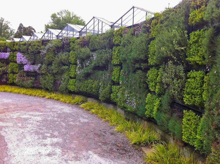 Vous n'avez pas de terrain où faire pousser vos légumes ? Qu'à cela ne tienne, cultivez-les sur un mur ! [...]