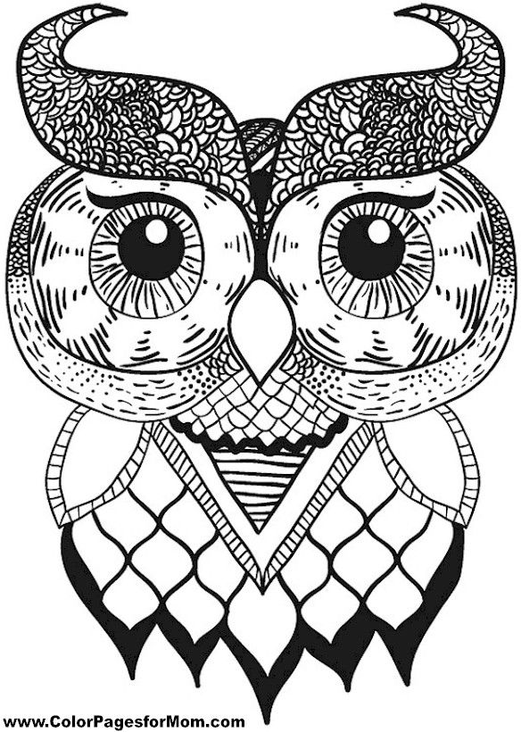 owl coloring page 17 more - Animal Mandala Coloring Pages Owl