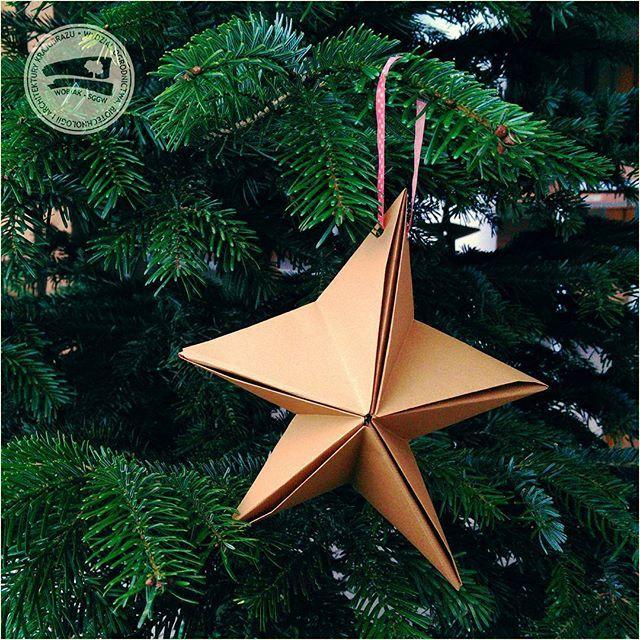 Dobrych Świąt! #choinka w holu budynku 37 przygotowana przez #KołoNaukoweArchitektówKrajobrazu #święta #bożenarodzenie #kompozycja #gwiazda #KołoNaukowe #ArchitekturaKrajobrazu #budynek37 #WOBiAK #SGGW 🌲🌲🌲 #MerryChristmas! #holidays #christmastree #xmastree #star #decoration #building37 #WULS