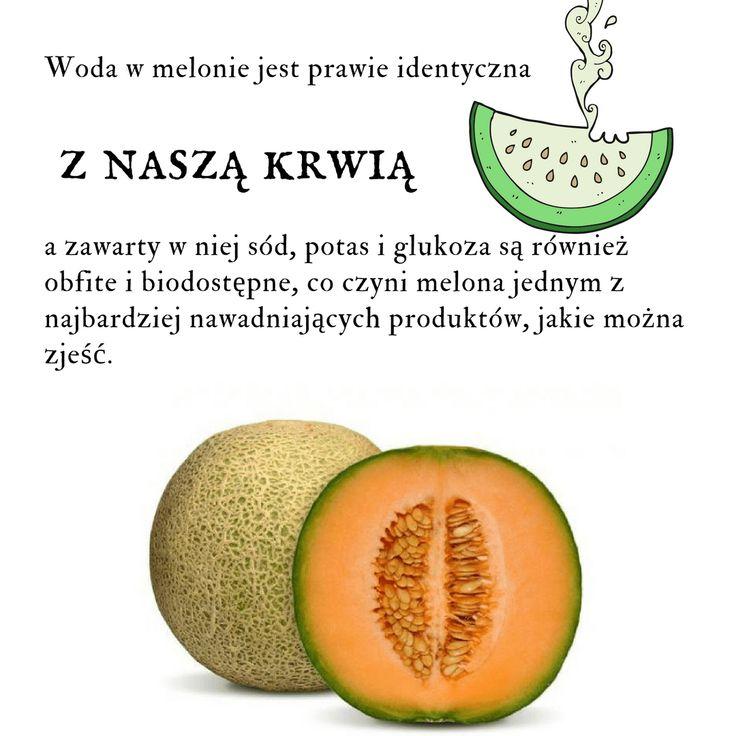Będziesz w szoku co zrobi z twoim ciałem – Uzdrawiająca moc melona – Szkolenia dietetyczne
