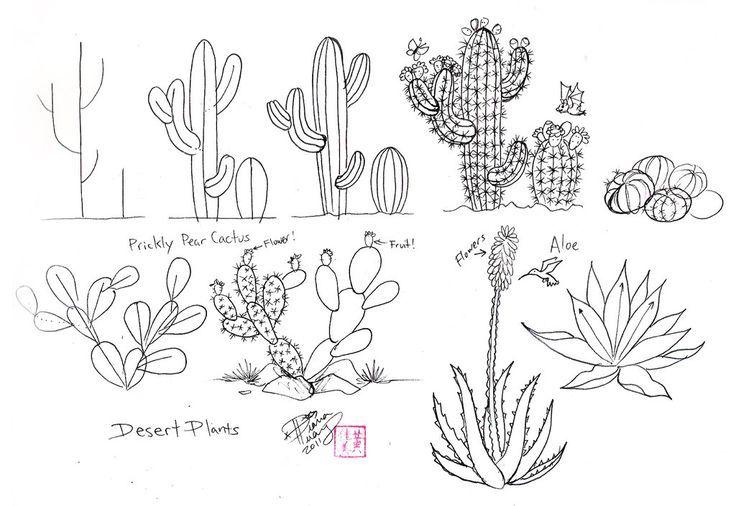 desert cactus drawing - Google Search