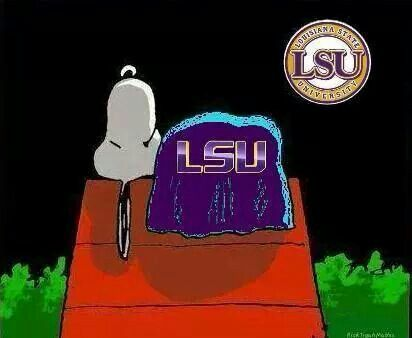17 Best Images About Lsu On Pinterest Saturday Night