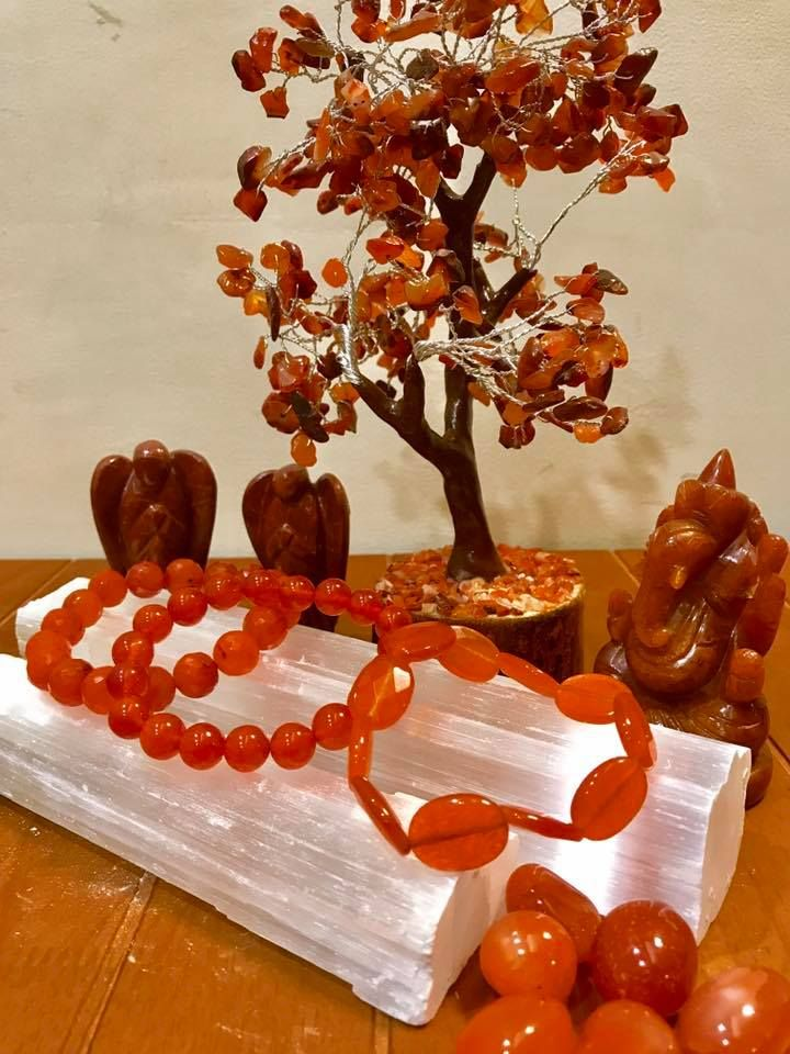 Sharing some Carnelian love! Carnelian is used for motivating oneself, increasing confidence and sparking creativity in everything's that you do! Buy carnelian healing crystal at Life's Precious Healing Studio at unbelievable prices! Call us on +919831000900 to know more.