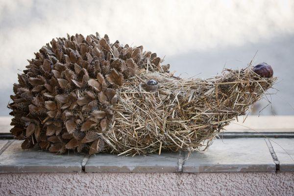 bukvicový ježek - lze i šišková varianta