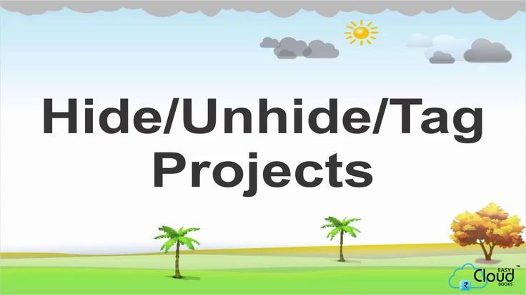 How to Hide Unhide & Tag Projects on easycloudbooks