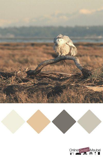 Kleurinspiratie grijstinten en bruintinten kleurenpalet for Kleurenpalet interieur