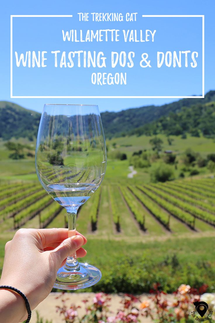 The Trekking Cat - Guide to wine tasting in the Willamette Valley in Portland, Oregon  | United States Travel | Pacific Northwest |