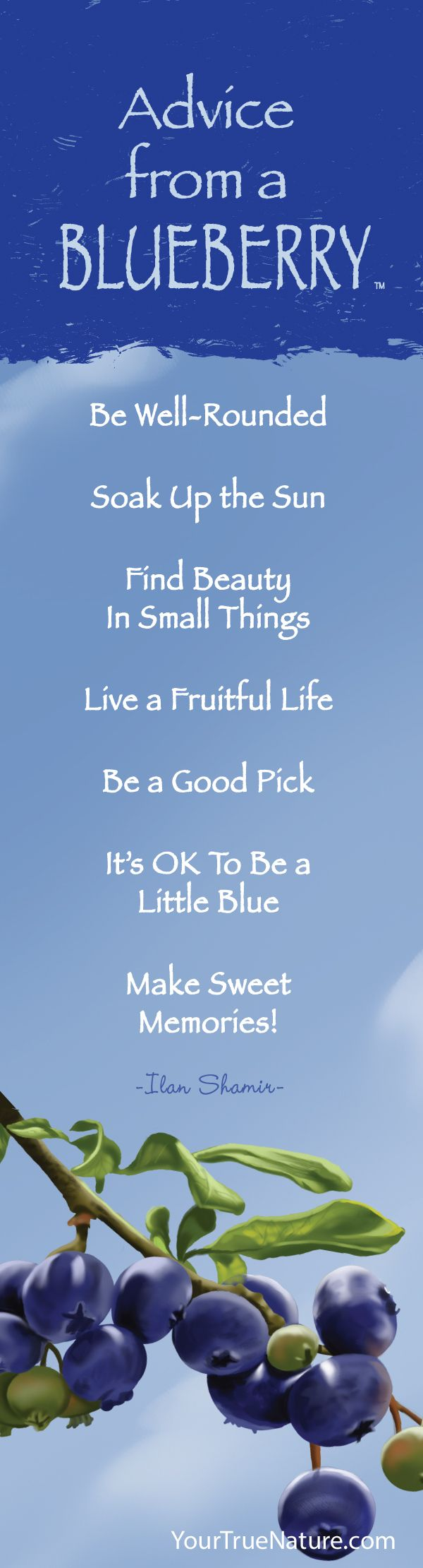 Advice from a Blueberry - Bookmark - Your True Nature