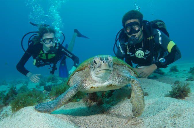 Mergulho com scuba em Fernando de Noronha