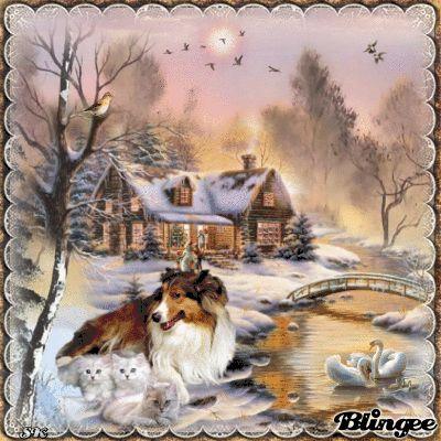 Hund Und Katzen Im Winter Blingees