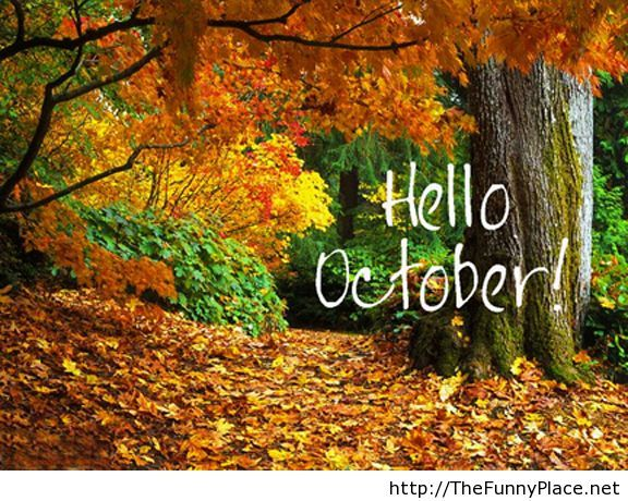 Hello october with wallpaper Hello october with wallpaper Funny