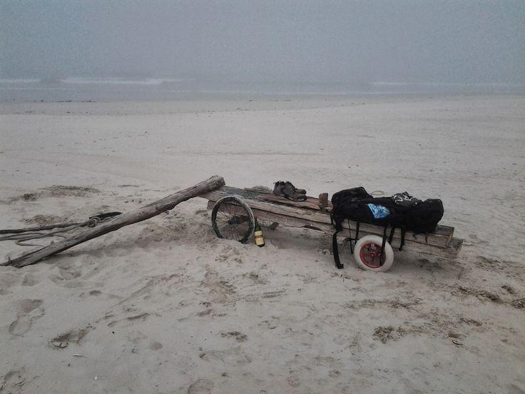 Driftwood Transportation Vehicle
