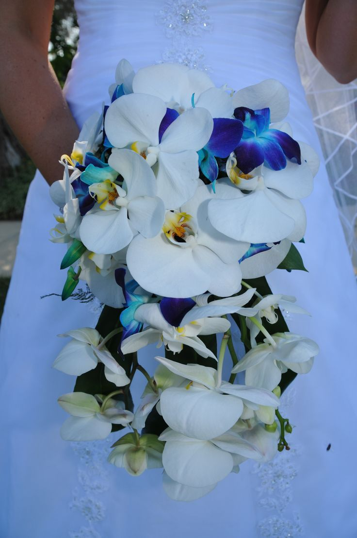 Cascading phalenopsis orchids and galaxy orchids.