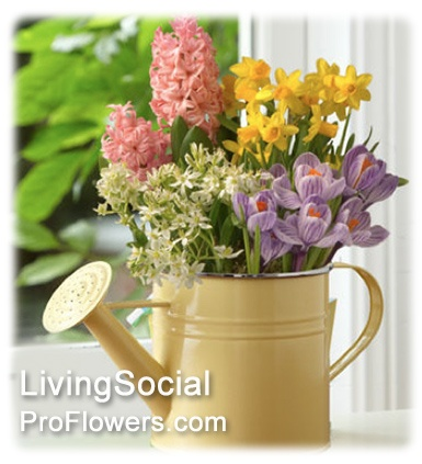 proflowers promo codes april 2014