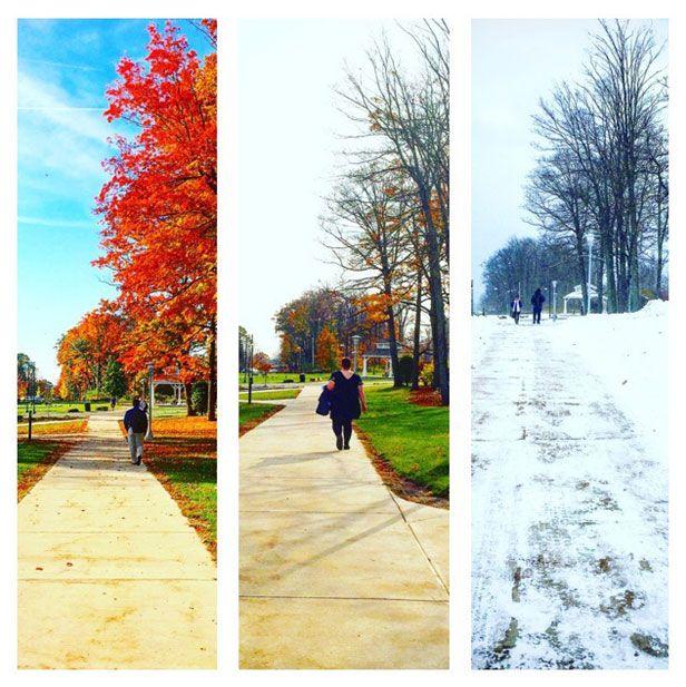 Fall transition at Pitt-Johnstown