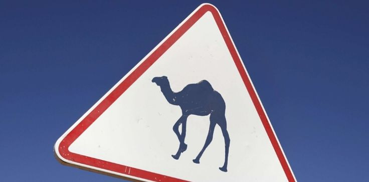 INFO OBS. Mali: Le coup de main secret d'Alger - L' armée algérienne fournit en toute discrétion à la France la logistique en carburant.(22/05/2013)