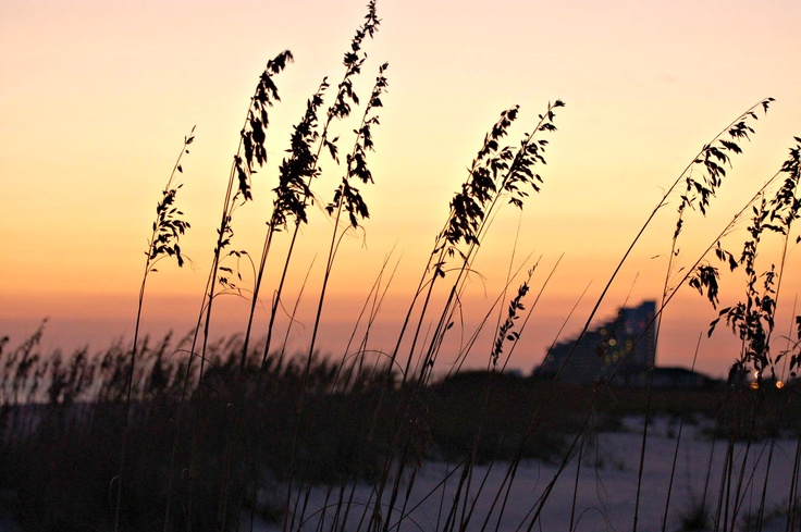 17 Best Images About Eden Condominiums On Pinterest Sunset Pictures White Sand Beach And