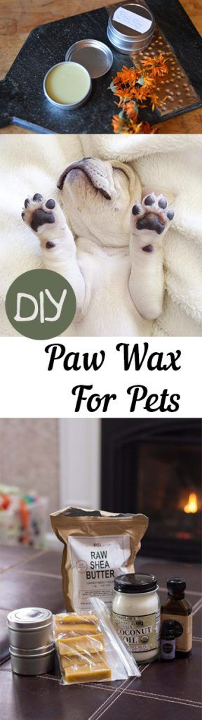 DIY Paw Wax for Pets, Pet Paw Wax, Paw Wax for Pets, Pet Tips and Tricks, Living With Pets, Keeping Pets Warm In the Winter, Paw Wax for Dogs, Paw Wax for Cats, Popular Pin