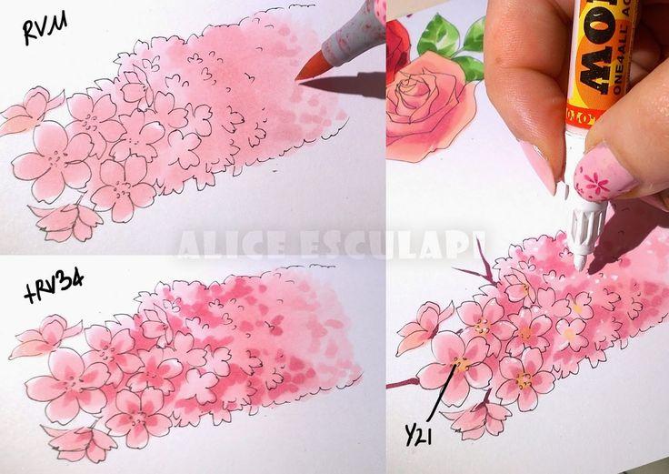 Colorare i fiori