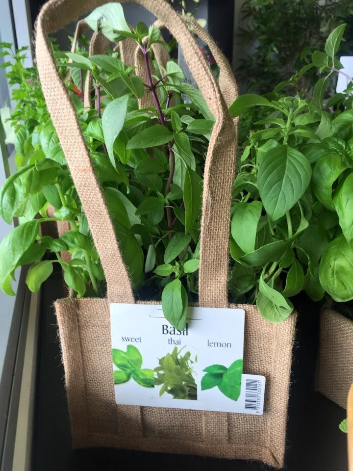 Our herbs have arrived and they look and smell amazing. Pop in tomorrow and get some before they are all gone. See you tomorrow Peta