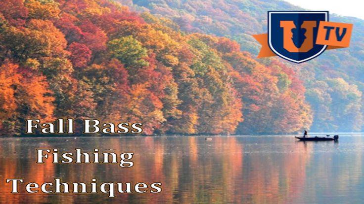 Fishing UK - Mike Iaconelli:  Fall Bass Fishing Techniques