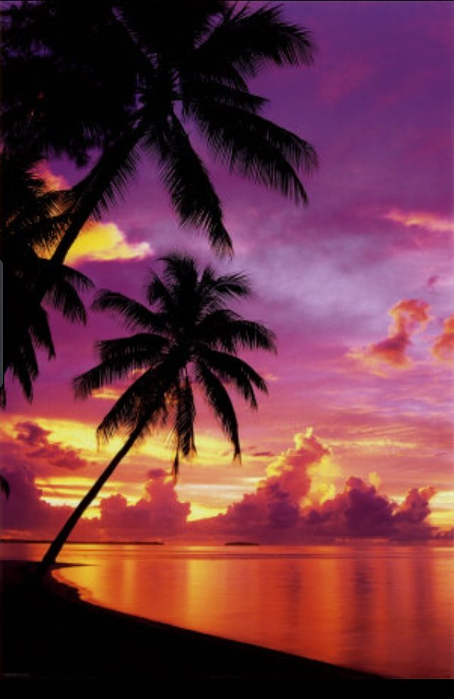 Ahh… sunset in Florida… loved that place