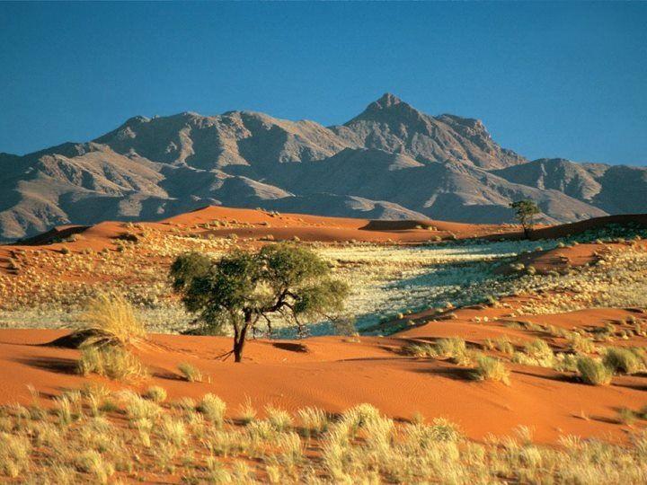 Kalahari : the Sacred home Of the Bushmen/Sanpeople.