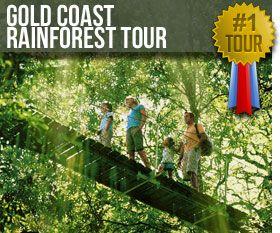 Gold Coast Day Tour