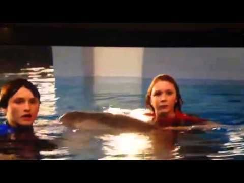 Dolphin tale 2 hazel and sawyer with winter