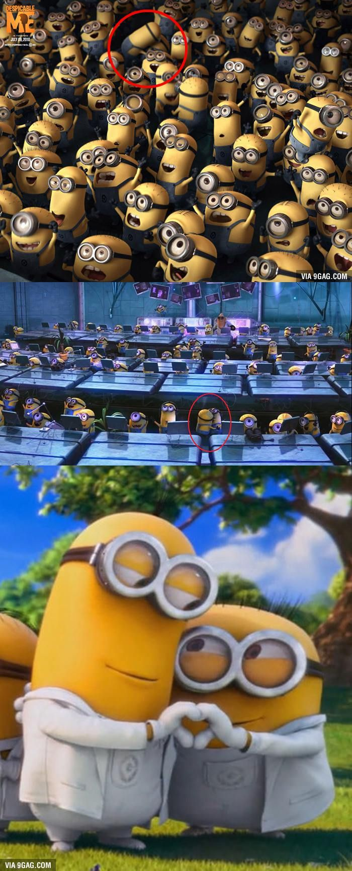 Minion agree with gay marriage, now the rest of the world