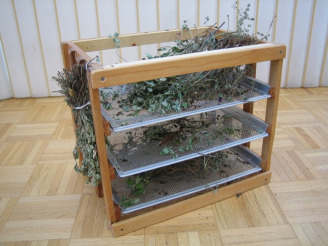 Cannabis Drying Rack Enchanting 41 Best Drying Herbs Images On Pinterest  Drying Herbs Herb Drying Design Inspiration