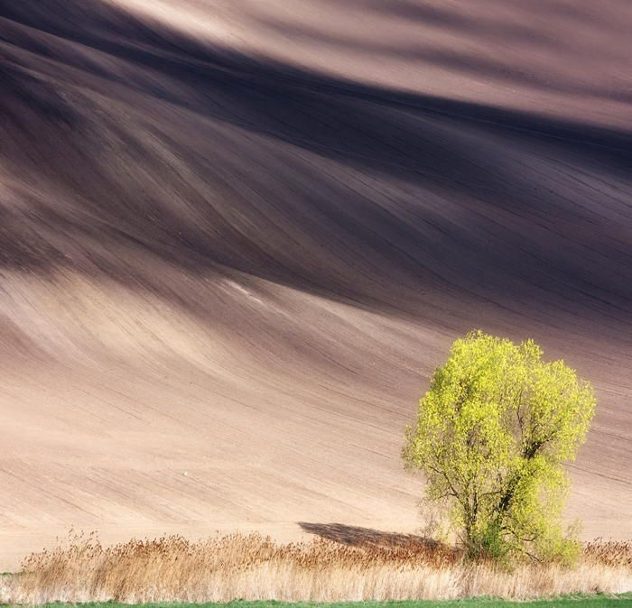 Best Photos That Inspire Images On Pinterest Amazing Photos - The mesmerising beauty of moravian fields photographed by marcin sobas