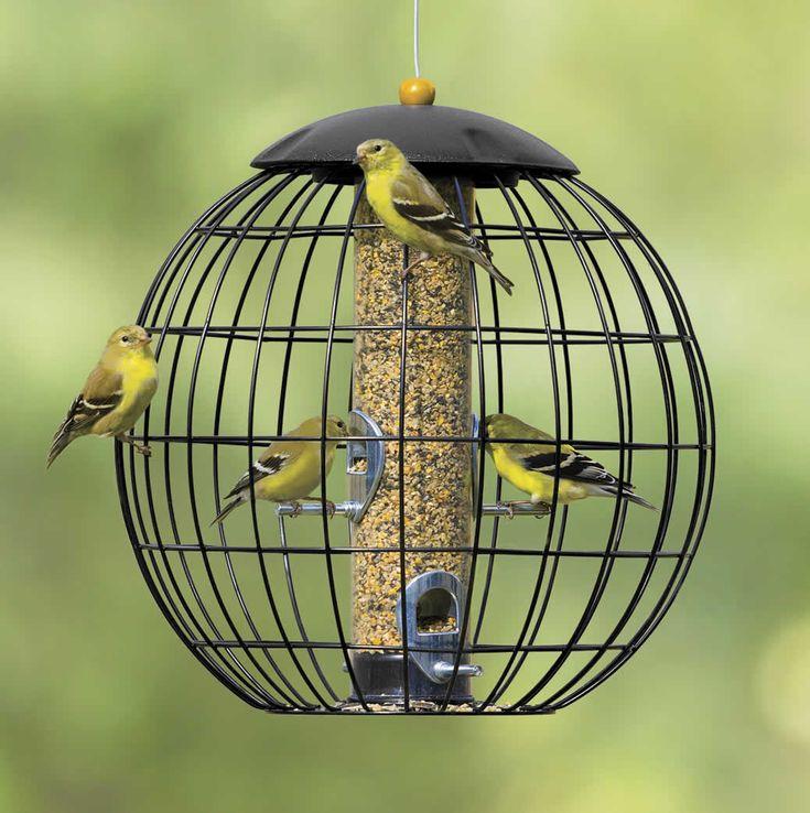 gardman bird feeders accessories
